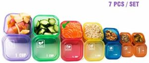 GAINWELL 4.3 out of 5 stars 79Reviews 7 Piece Portion Control Container